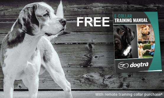 Free Training eBook